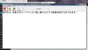 Ami Voice2